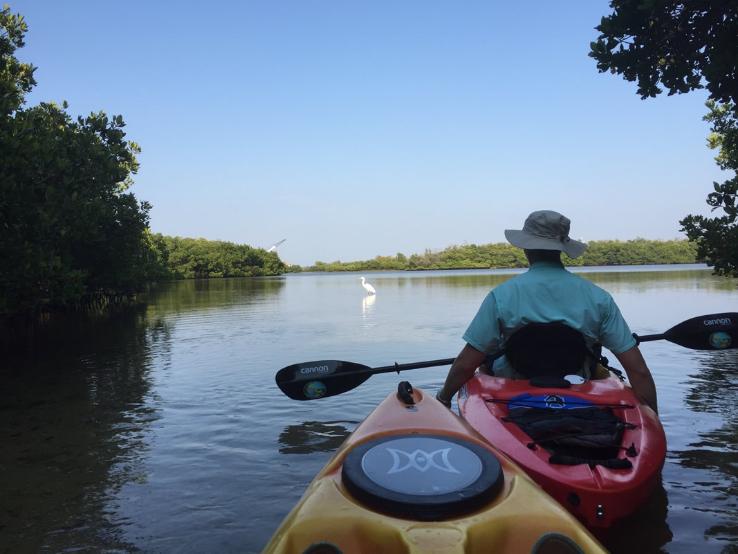 Sarasota Kayak Rental
