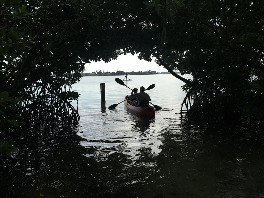Sarasota Kayak Rentals